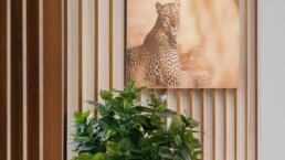 ANA XKS hannelore veelaert DSC00290 lo res uai Interieur Architecten | Mechelen | Design Studio Anneke Crauwels